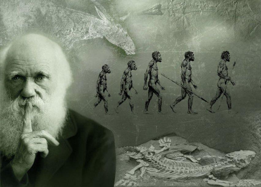بررسی علمی و منطقی نظریه تکامل ( نقد و رد داروینیسم )